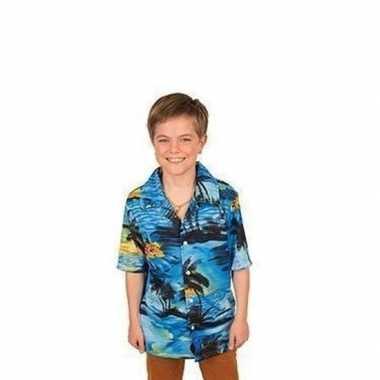 Carnavalskleding blauw hawaii hemd jongens helmond