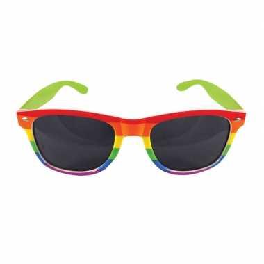 Carnavalskleding carnavalaccessoires bril regenboogkleuren helmond