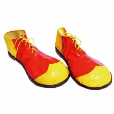 Carnavalskleding circus schoenen een clown helmond