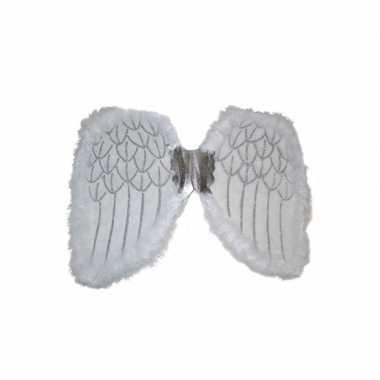 Carnavalskleding vleugels een engel helmond