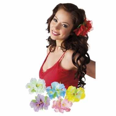 Carnavalskleding x stuks hawaii accessoires haarbloemen clip helmond