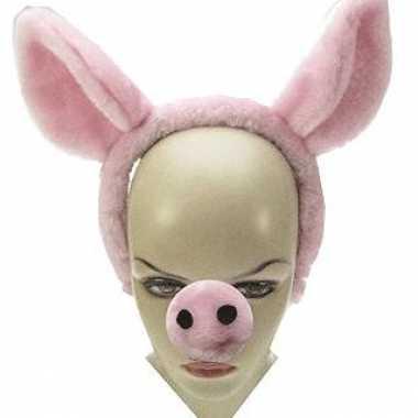 Carnavalskleding x stuks varkens snuit diadeem verkleed oren helmond