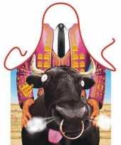Carnavalskleding funartikel schorten rodeo helmond
