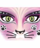 Carnavalskleding gezicht glitter plakkers poes kat helmond