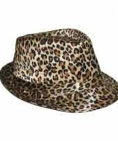 Carnavalskleding hoed luipaard print helmond
