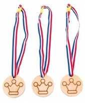 Carnavalskleding medailles winnaar helmond