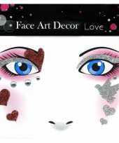 Carnavalskleding oog schmink sticker hartjes duiven glitters helmond