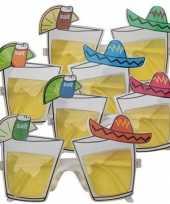 Carnavalskleding party bril tequila glaasjes helmond