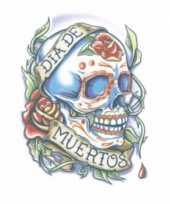 Carnavalskleding plak tatoeage doodshoofd dag dood helmond