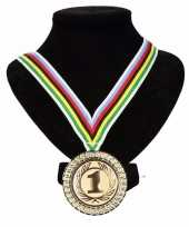 Carnavalskleding regenboogtrui kleuren nr halslint wereldkampioen helmond