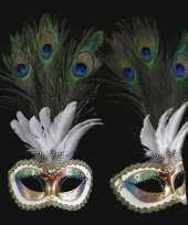 Carnavalskleding wandversiering italiaans pauwveren oogmasker helmond