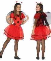 Dierencarnavalskleding lieveheersbeestje verkleed jurk jurkje meisjes helmond